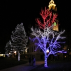PPHPC Hosts 35th Annual Trees of Life