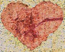Hearts of Hospice Logo